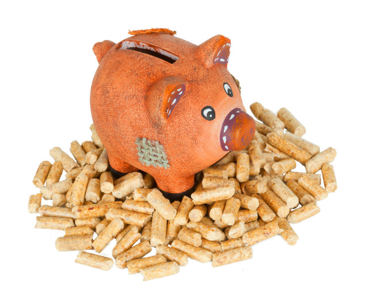 piggy bank surrounded by pellets